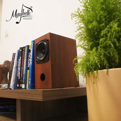 Loa bookshelf 10cm Fostex P1000K