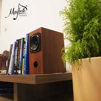 Loa bookshelf Fostex P1000K nhập khẩu