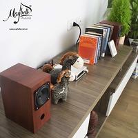 Loa bookshelf toàn dải mini Fostex P800K